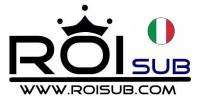 RoiSub